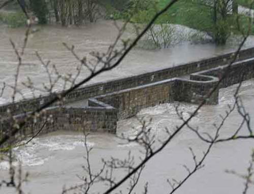 Consejos para protegerse en caso de inundación. Parte 1
